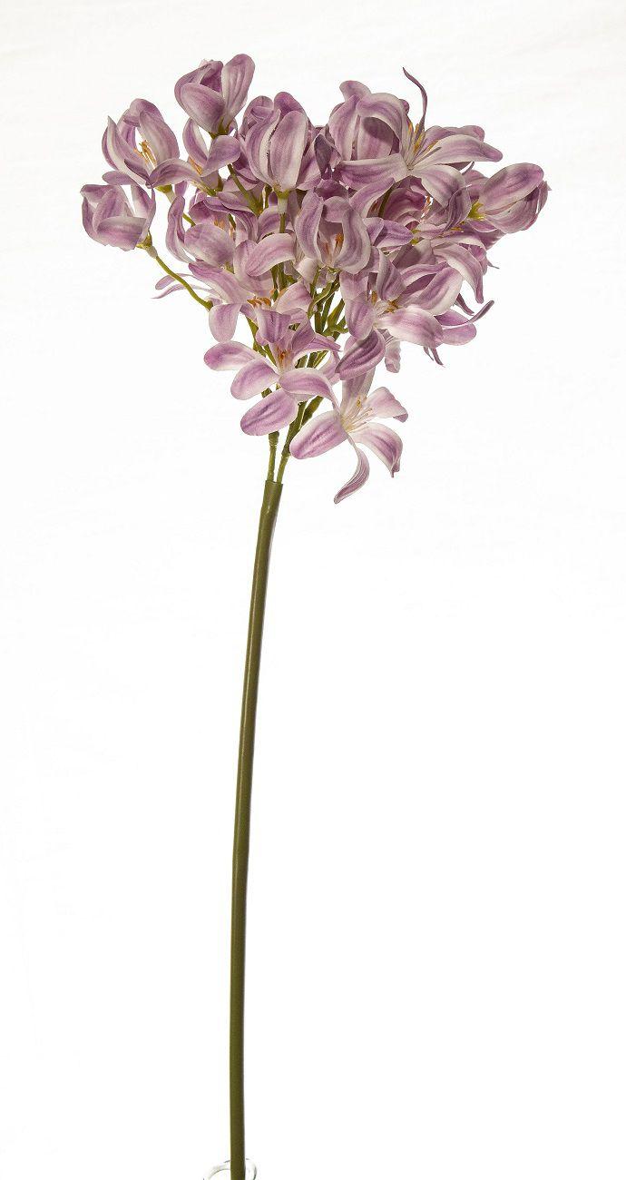 Flor Agapanthus Lilás - 75Cm