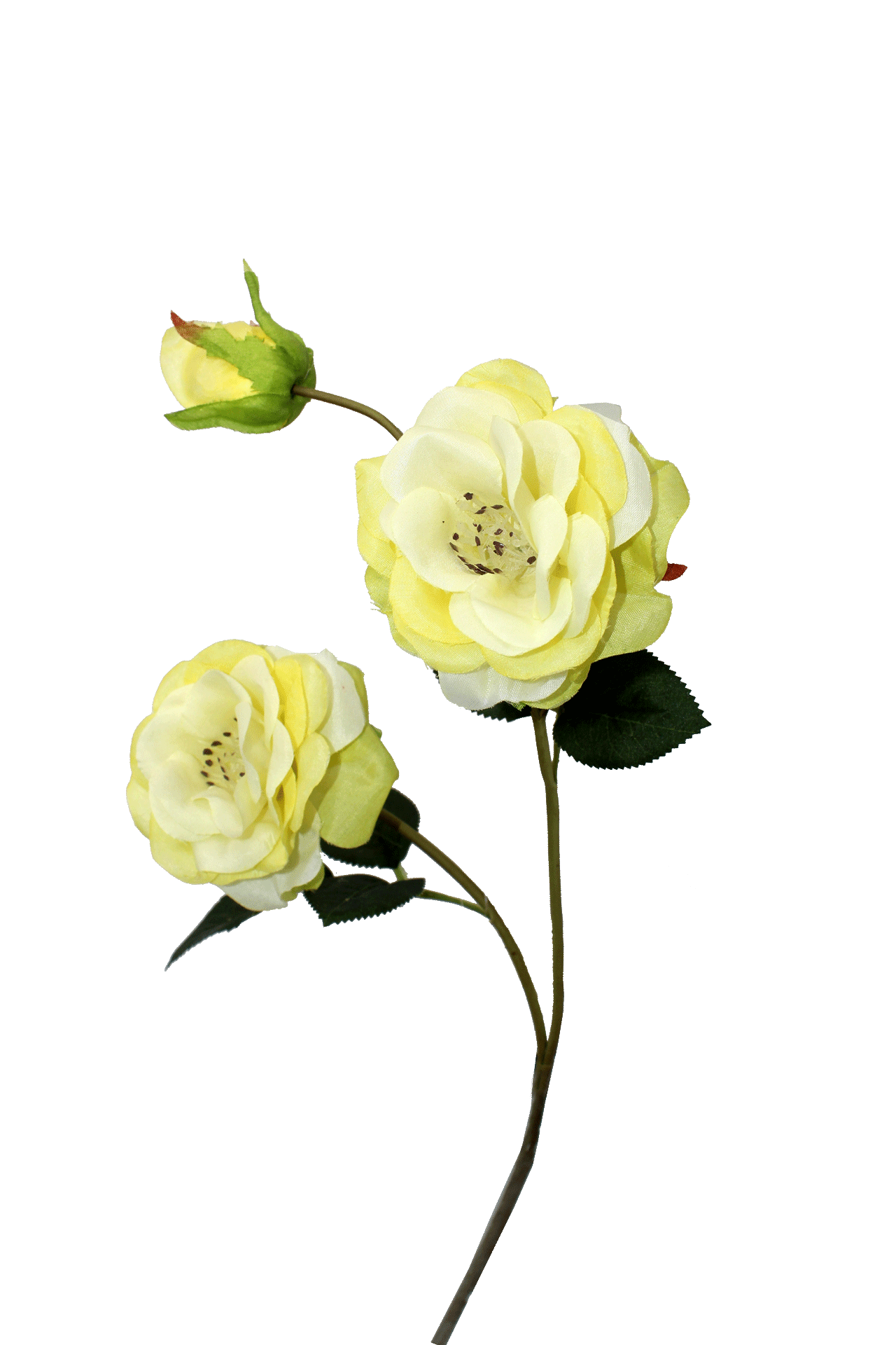 Flor de Camélia - X3 -  60cm Altura