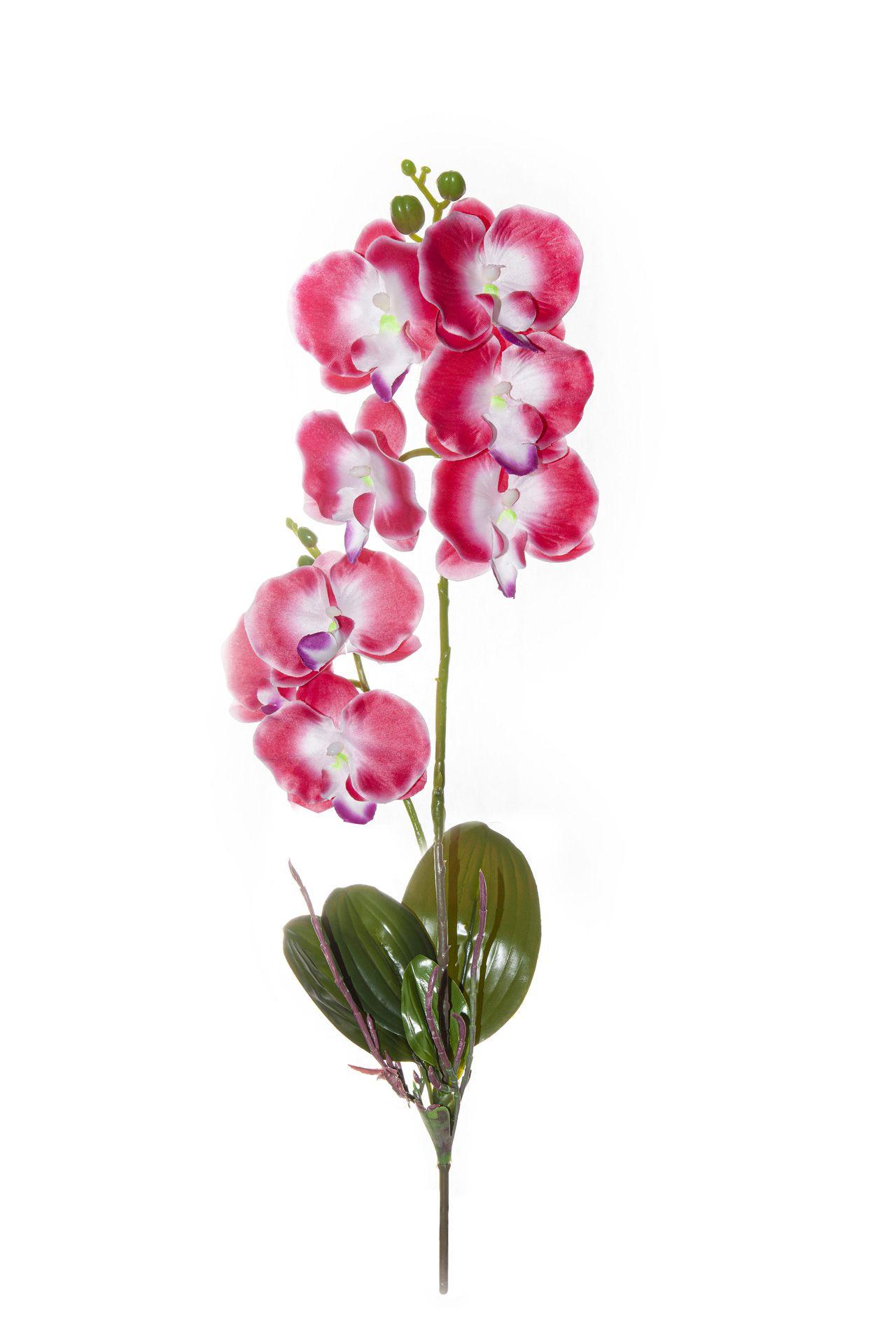 Flor De Orquídea C/Folha - X8 - 52Cm Altura