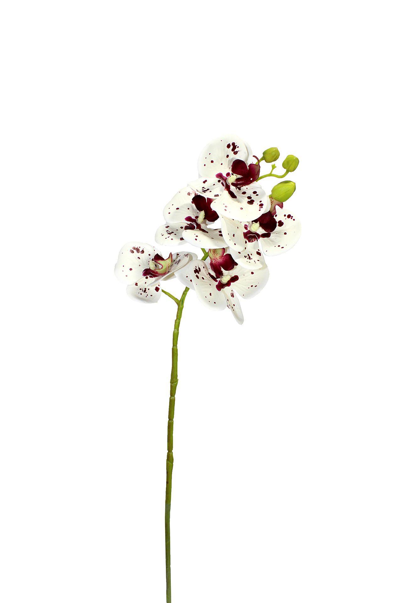 Flor De Orquídea - X6 - 75Cm