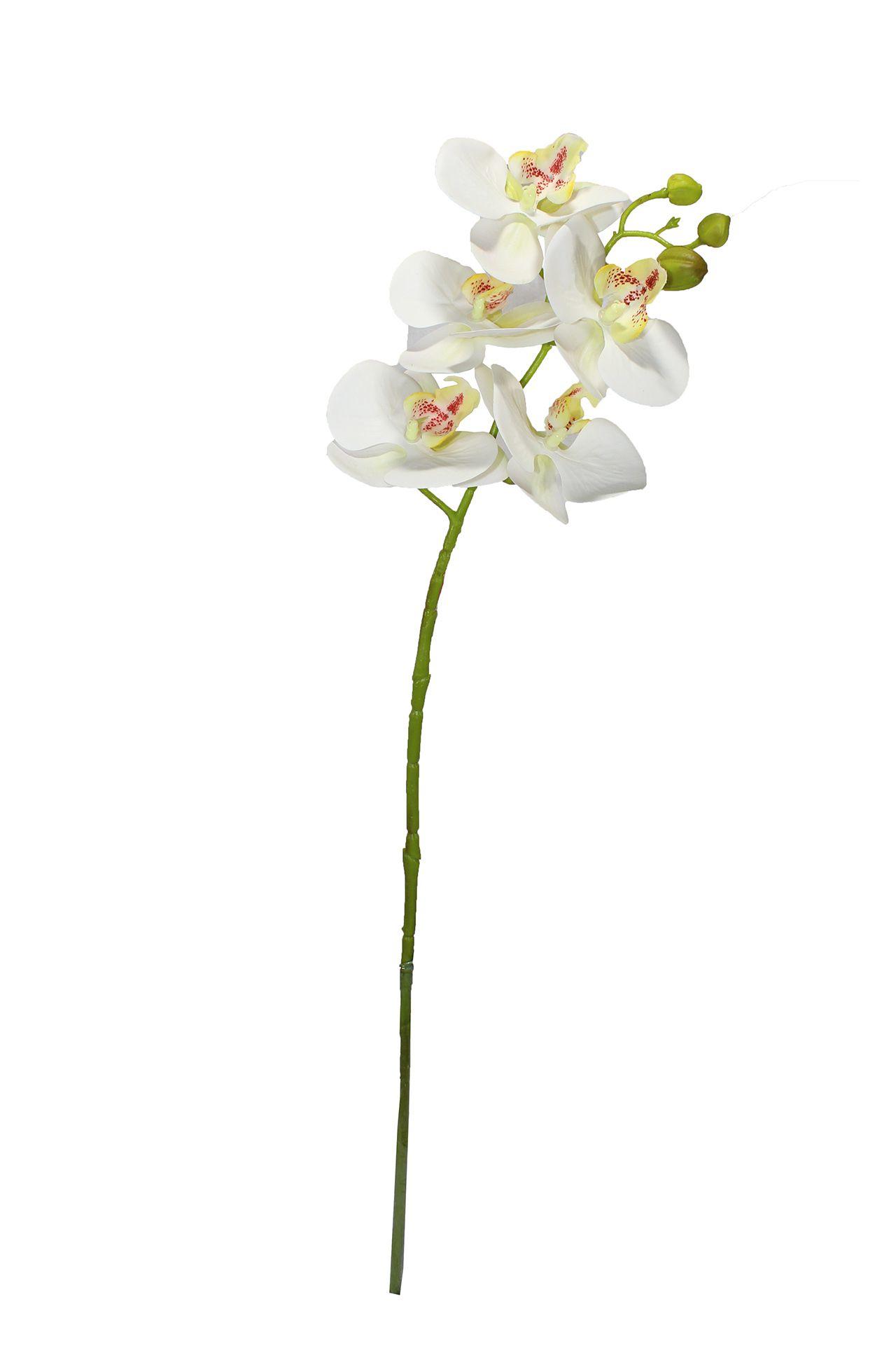 Flor De Orquídea X5 - 72Cm