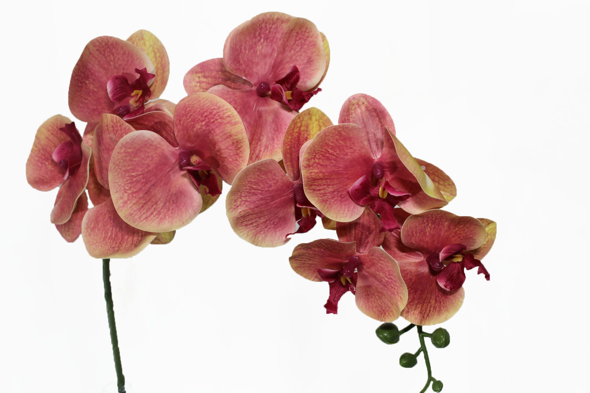 Flor de orquídea X6 - Pano - 75cm
