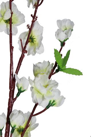 Flor de Pessego Real
