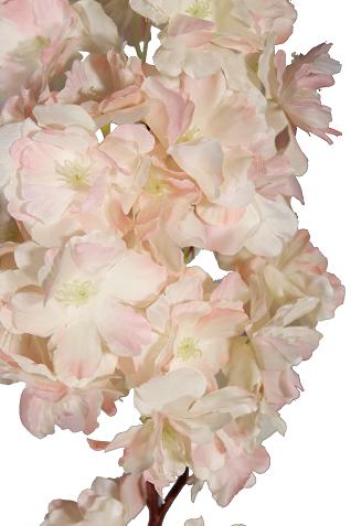 Flor de pessego ER