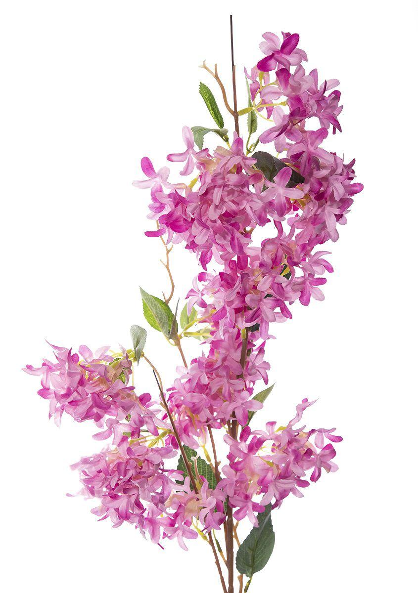 Flor De Pessego 95Cm