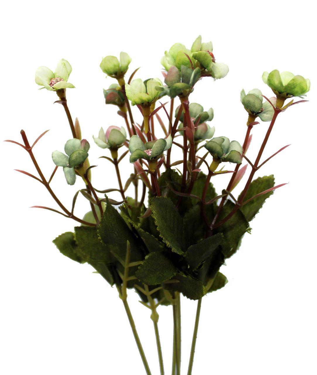 Flor Do Campo Unidade