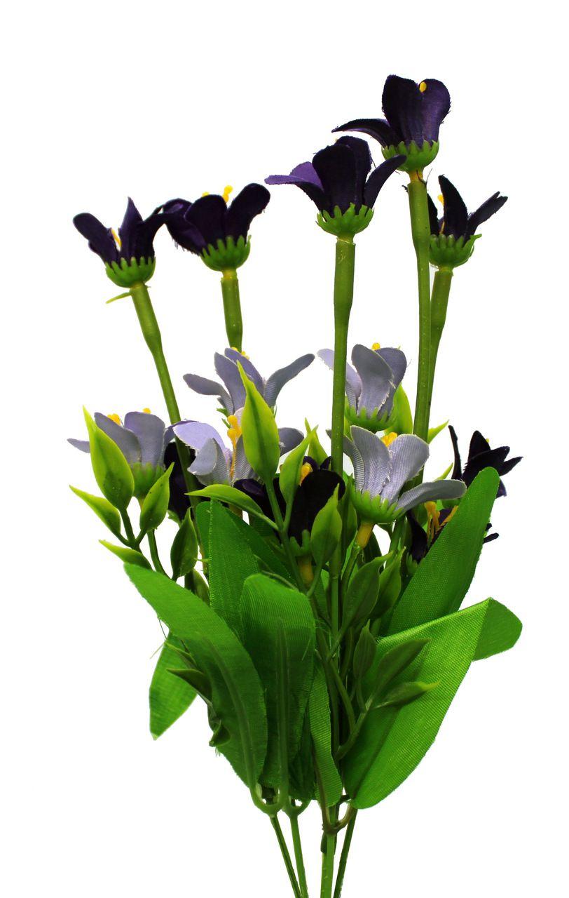 Flores Do Campo Unidade