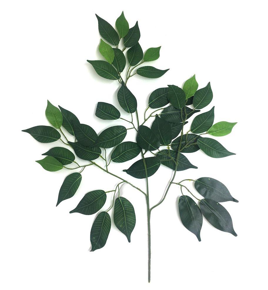 Folhagem de Ficus - 40cm Altura