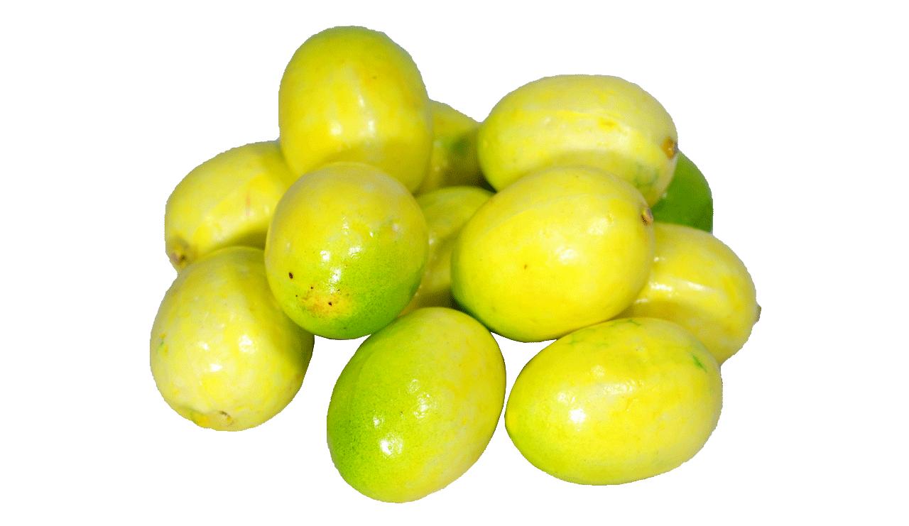 Mini Maracujá - Pct/12Un. - 5Cm Altura