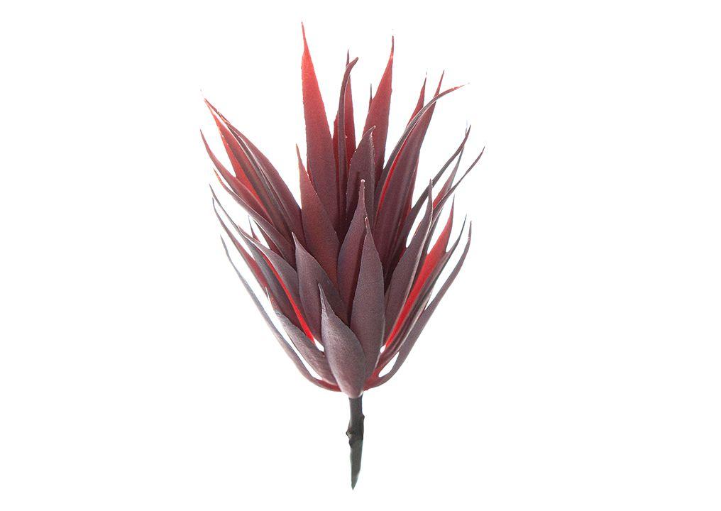 Mini Suculenta - 16cm Altura X 8cm Largura