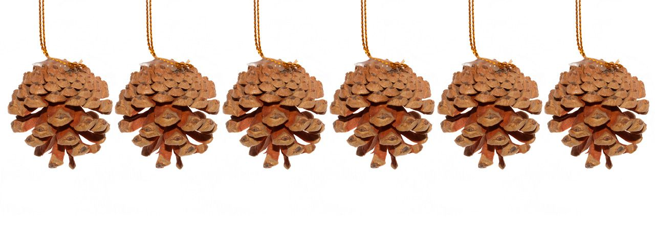 Pinha Pendente Para Árvore De Natal C/6 - 4 Cm