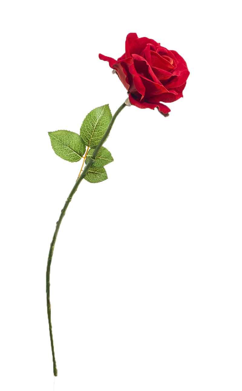 Rosa unitária - 72cm