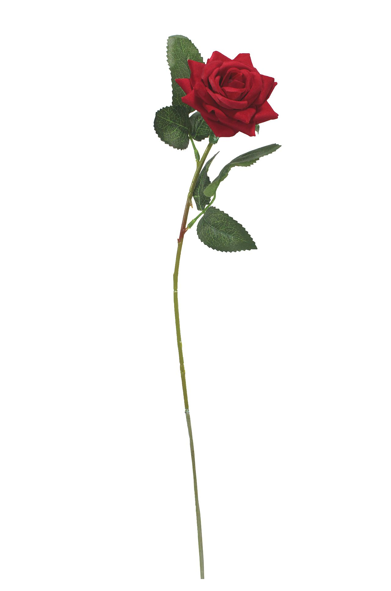 Rosa Unitária  - 70Cm