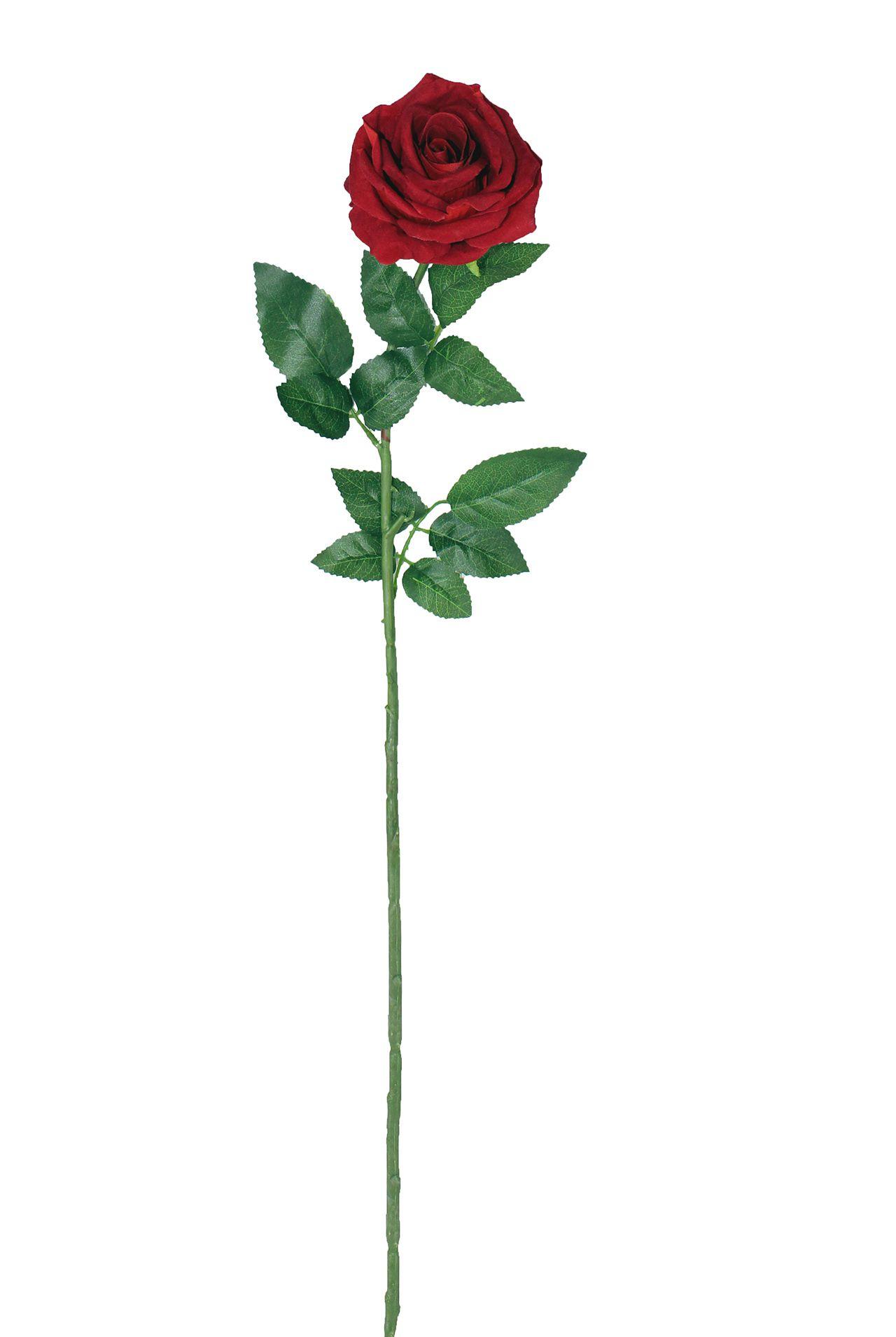 Rosa Unitária  - 80Cm