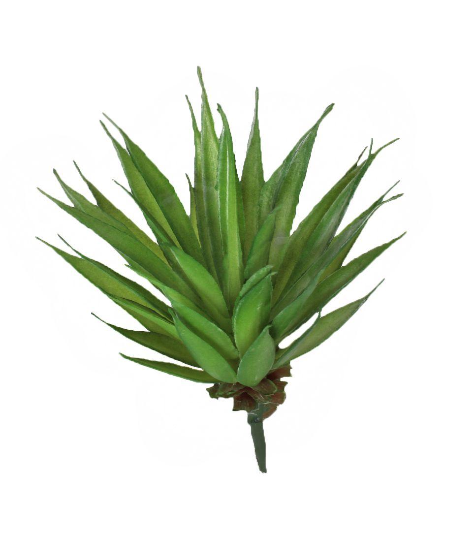 Mini Suculenta - 15cm Altura X 12cm Largura