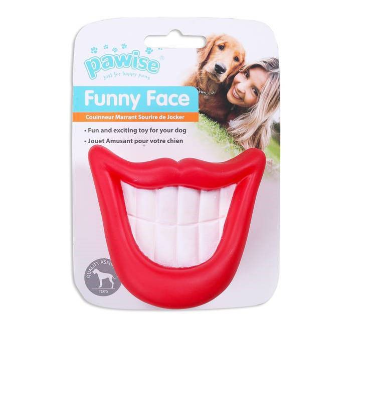 Brinquedo de Vinil Sorriso Funny Face