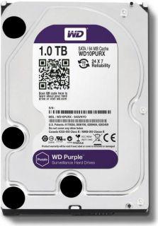 HD 1 Terabyte Purple
