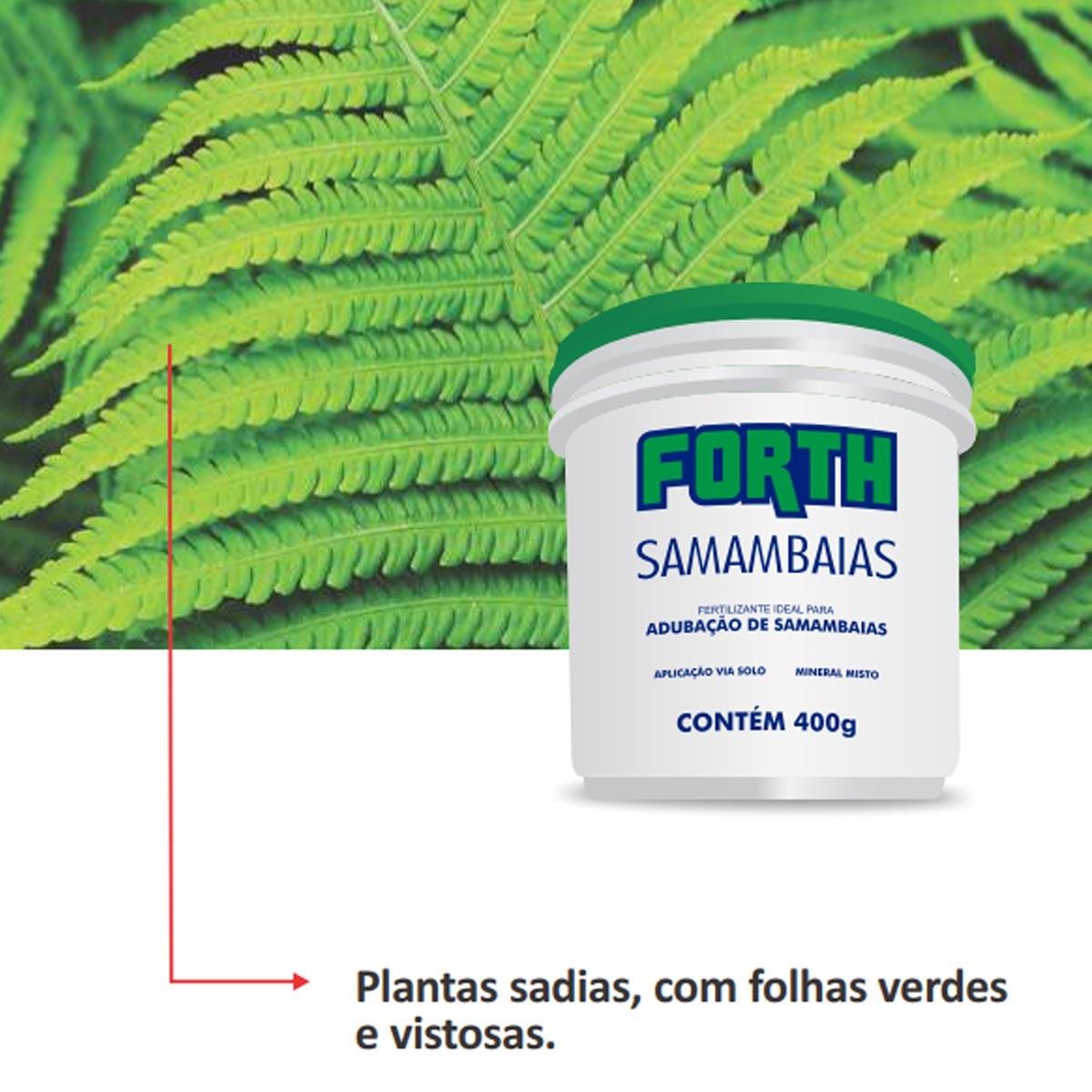 Adubo Fertilizante Forth Samambaia 400g