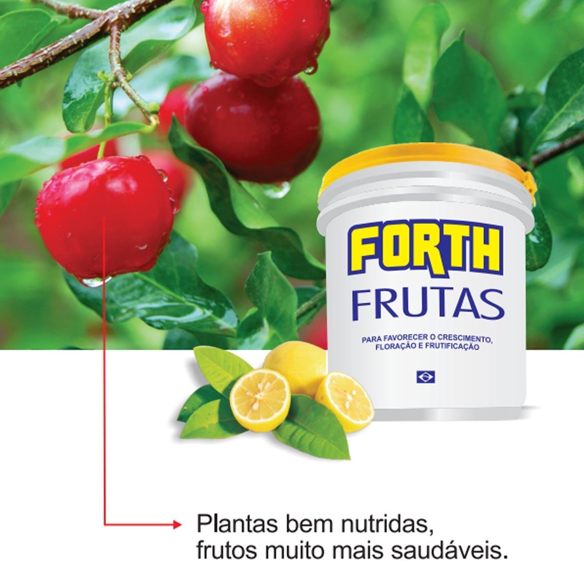 Fertilizante Forth Frutas 10Kg