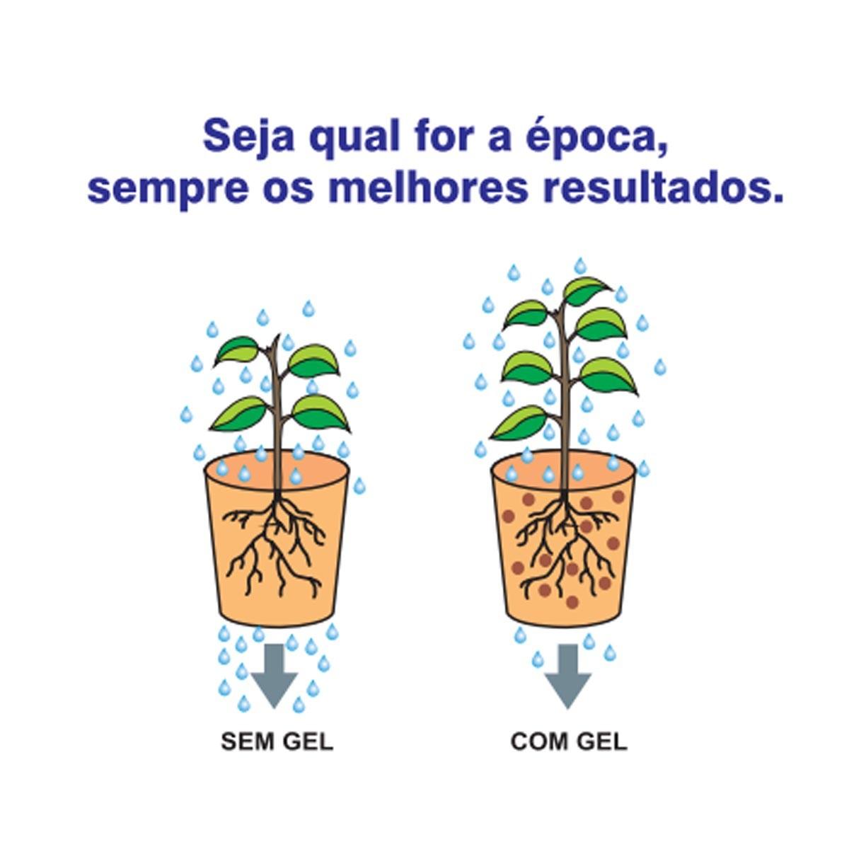 Fertilizante Forth Gel Plantio 250g