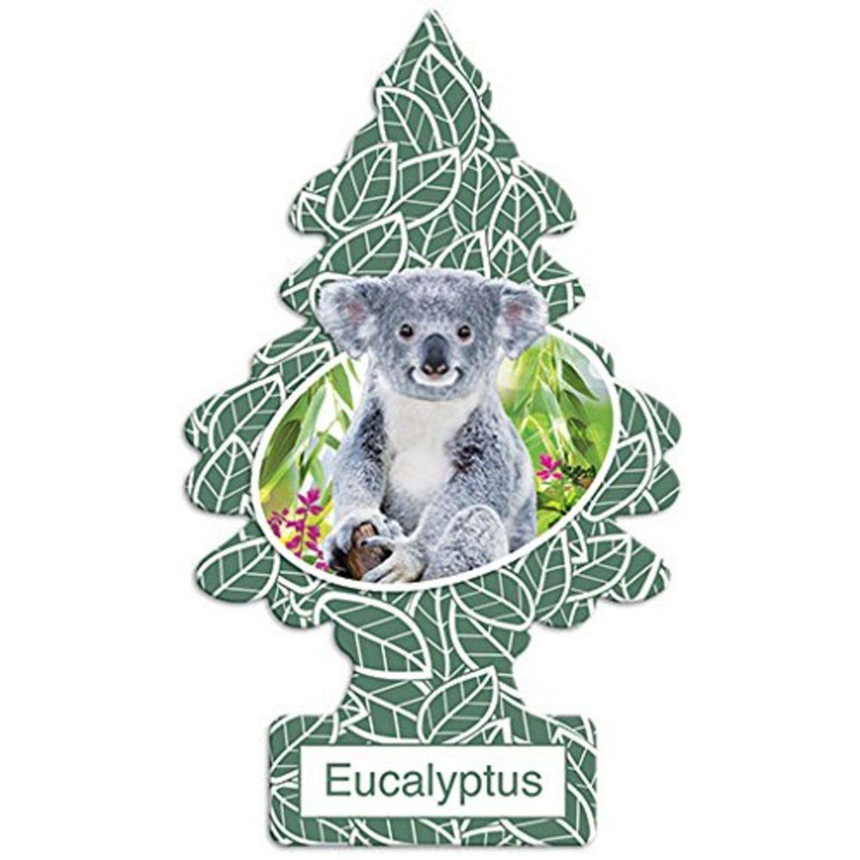 Little Trees Aromatizante Eucalyptus Car Air Freshener Automotivo