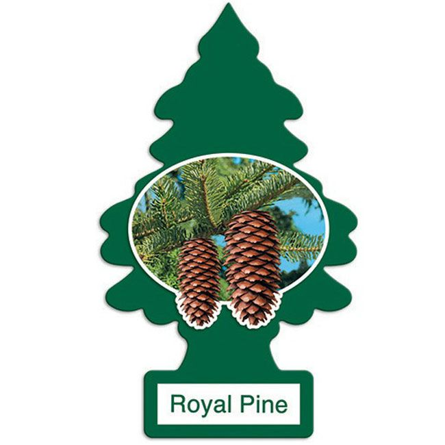 Little Trees Aromatizante Royal Pine Car Air Freshener Automotivo