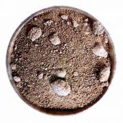 Açúcar de Coco Armazém do Verde 100g produto 100% natural venda a granel ideal para dietas restritivas