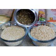 Arroz Integral Cateto Sem Casca Produto Natural A Granel 500g