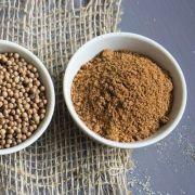 Coentro em Pó Sem Sal Ideal Para Temperos e Receitas Produto Natural A Granel 100g