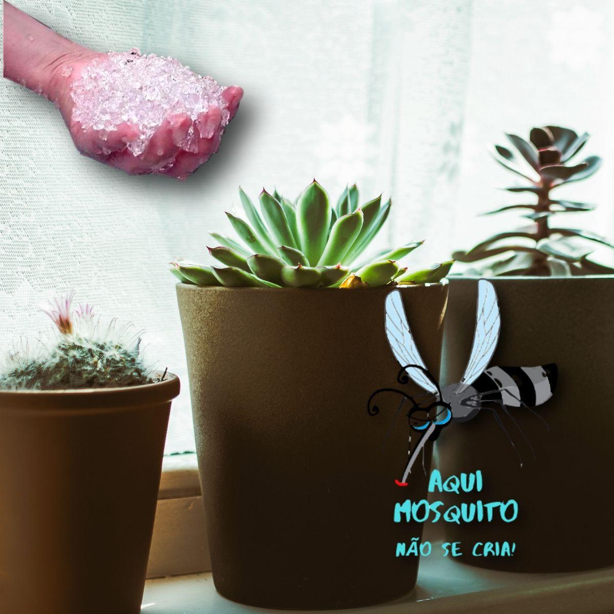 Hidrogel para plantio auto irrigável e anti- mosquito 1KG