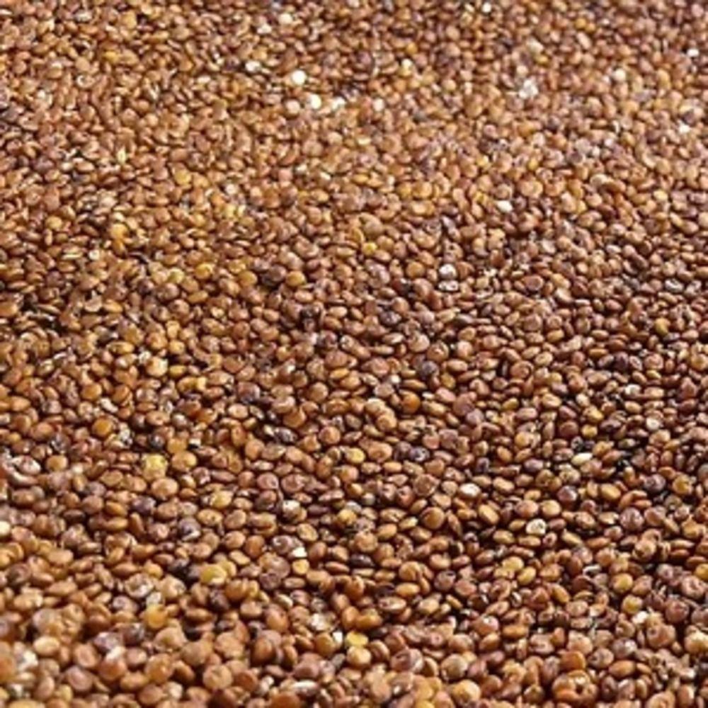 Quinoa Real Em Grão Vermelha Produto Natural A Granel 200g