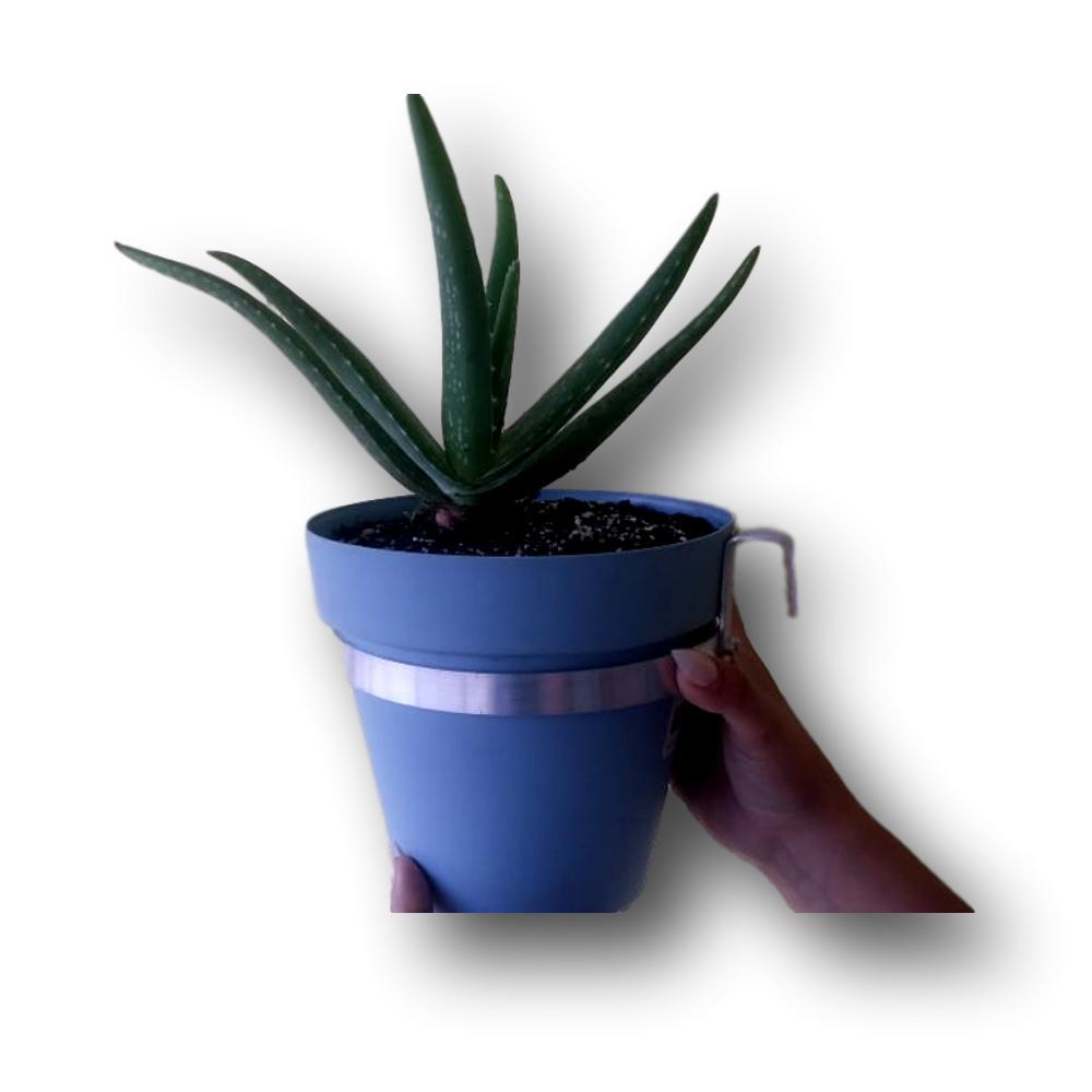 Suporte universal Para Vaso Em Aluminium Natural 14 centímetros de diâmetro