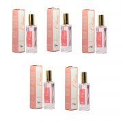 Kit de 5 Perfumes Portáteis de 30ml Contratipo das Melhores Fragrâncias do Mundo