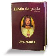 Bíblia Ilustrada Luxo - Grande - Marrom