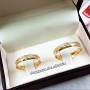 Alianças Ouro 18k Casamento Côncova