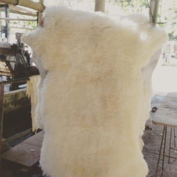 Pelego 90X60cm grande /pelego/carneiro/lã