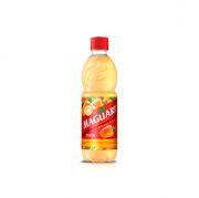 Suco Concentrado Cajú Maguary (Faz 6 litros) 500ml