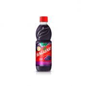 Suco Concentrado Uva Maguary (Faz 6 litros) 500ml