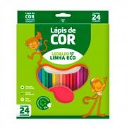 Lapis De Cor Linha Eco 24 Cores Formato Sextavado Leo e Leo