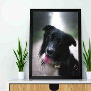 Quadro decorativo em canvas - Cachorro