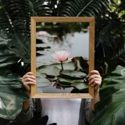 Quadro decorativo em canvas flor de lotus