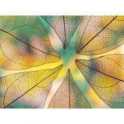 Quadro decorativo em canvas Folhas II