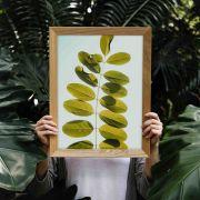 Quadro decorativo em canvas folinhas verdes