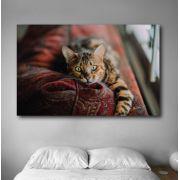 Quadro decorativo em canvas gato