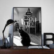 Quadro decorativo em canvas gato preto