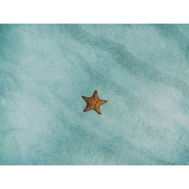 Estrela do mar - Quadro decorativo em canvas