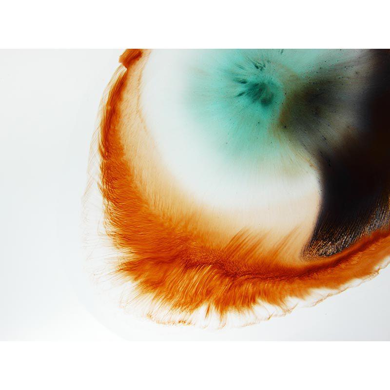 Feather abstract - Quadro decorativo em canvas