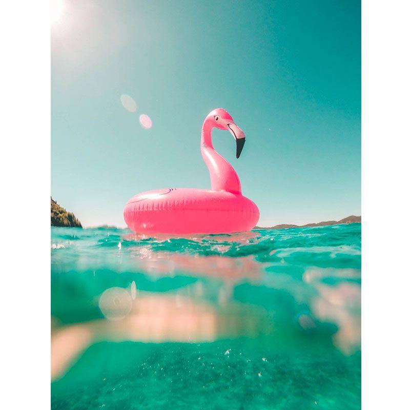Flamingo - Quadro decorativo em canvas