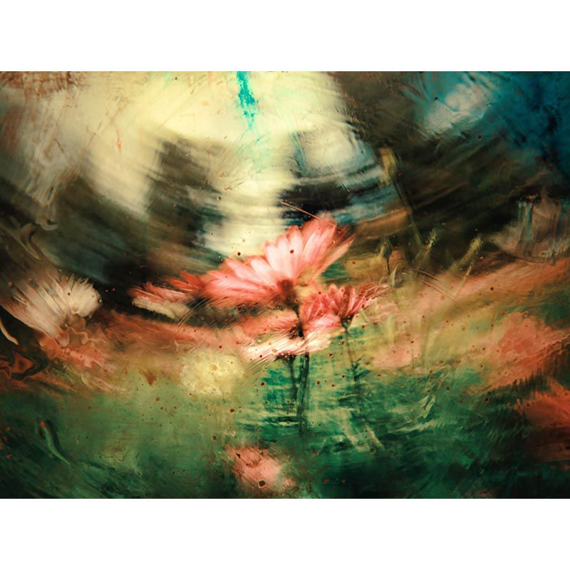 Flowers in the wind - Quadro decorativo em canvas