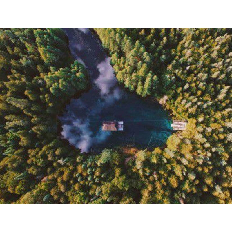 Quadro decorativo em canvas casa na floresta